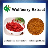 Factory Price Supply Pure Natural Wolfberry Extract