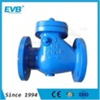 Cast Iron Check Valve, 10K Swing Valve