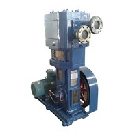 Oil-Free Vertical Anticorrosion Vacuum Pump (2WLW-B/F/T Series)