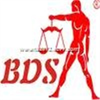 BDS Notebook scale 2 series