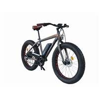 Newest Electric Fat Bike with 350W 48V Rear Motor