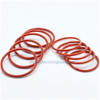 FEP Encapsulated O Rings Red Silicone Rubber Core Clear FEP Jacket O Rings