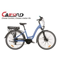 New Style central motor electric bike