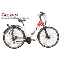 Different type mid motor electric bike