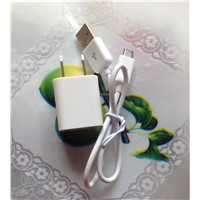 US Plug white color USB wall charger USB cable kit travel charger  for Samsung HTC Motorola