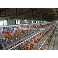 galvanized poultry cages for battery chicken,layer chicken