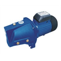 Jet Pump Electric Water Pump Booster Pump From China