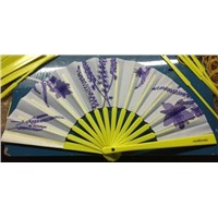 Promotion Plastic Fan with Colored Fabric Hot Sale