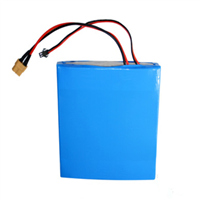 12V20AH LiFePO4 Battery Pack For Solar Street Light