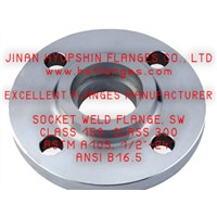ANSI SOCKET WELD FLANGES, CL300 600 900 SWRF FLANGES, CARBON STEEL