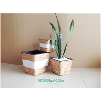 Planters Pot Hyacinth Home24h Hyacinth White Star Pots. Best Selling