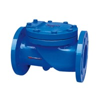 rubber disc check valve