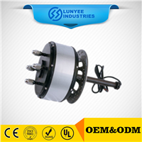 Power Electric Hub Motor