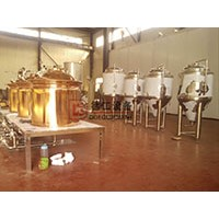 China 100l craft beer brewing equipment