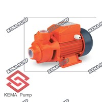 Qb 60 Series Peripheral Pumps for Clean Water
