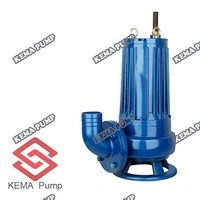 Wq Wqd Series Sewage Submersible Pump for Agricultural Irragtion