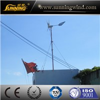 Small Wind Turbine (MAX 800W)