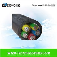 4X16+1X10 0.6/1KV XLPE PE insulated power cable Aluminum