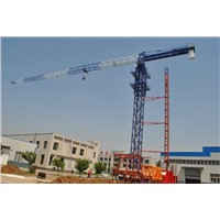 Topless Tower Crane Qtz 80p (PT5613) max load8t