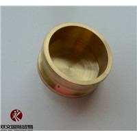 High Quality Brass Camlock Coupling dust plug