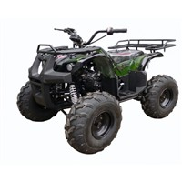 110cc Four Stroke ATV Quad, 8 inch Tire
