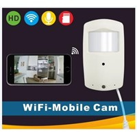 Hidden Wireless P2P IP Camera