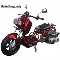 ICE BEAR NEW MADDOG 150cc Scooter Street Bike (PMZ150-19N) Price 600usd