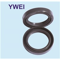high quality tcd aw oil seal AW4063E for pump