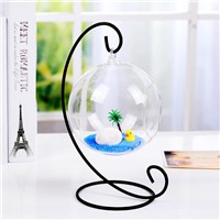 Hanging Round Ball Glass Vase