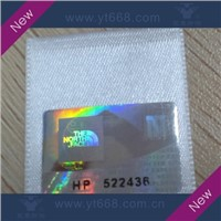 Farbic label with hologram