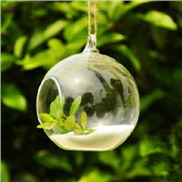 Beautiful Glass Globe Terrarium with one open Hanging Glass Vase and Candle Holder Home Decoration