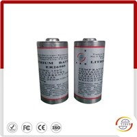 Downhole MWD C size battery ER26505