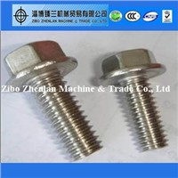 China supplier stainless steel 904/904l hex flange bolts