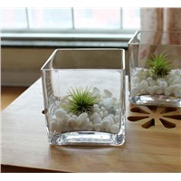 Wholesale High Quality Square Glass Vase