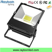 high lumen bridgelux cob outdoor ip67 200w led flood light with cheap price