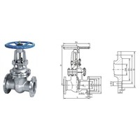 Flanged Globe Valve-Cast Iron Gate Valve-Forged Steel Flange Globe Valve