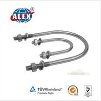 Stainless Steel AISI304/316 U Bolt with Washer Plate and Nuts