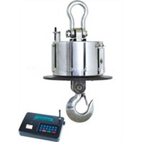 Crane electronic scales-wireless scales,high temperature proof