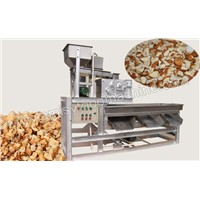 Peanut & Almond Kernel Chopping Machine