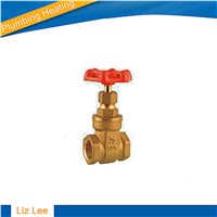 Brass Gate Valve with Aluminium Handle