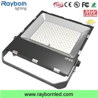 100W/200W IP65 LED Flood Light/LED Floodlight Lamp with Samsung Chips
