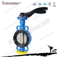 Manufacturer API/DIN/BS standard soft sealing wafer type butterfly valve price