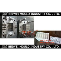 Plastic Injection Auto Battery Container Mould