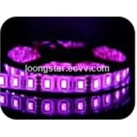 LED Flexible Strip (XLRDT003 SMD 5050-60 RGB)