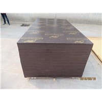 KANGAROO BRAND FILM FACED PLYWOOD, POPLAR CORE, WBP MELAMINE GLUE, BROWN  PRINTED FILM