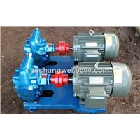 2cy Lubricating Oil Transfer Gear Pump