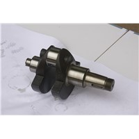 High performance Diesel Engine Spare Parts S195 Crankshaft