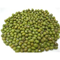 Mung beans for Sell
