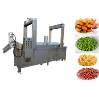 Automatic Chips/Chicken/Beans Frying Machine