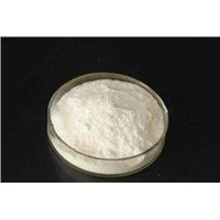 Hot Sell Pharm Grade Glucosamine USP grade